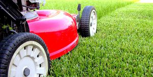 Ozzy Lawn Service for Sale in Humble, TX