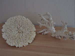 "2 artificial white Coral Pieces, 11""×8"" and 11"" round for Fish Tank for Sale in Sun City, AZ"