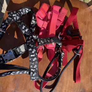Dog Harnesses for Sale in Orange, CA