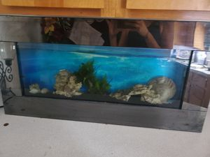 Wall aquarium for Sale in Everett, MA