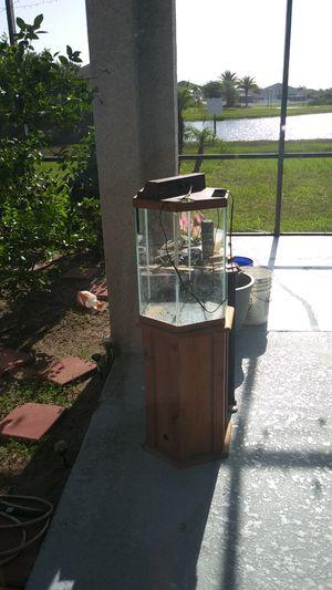 20 gallon Hexagon fish tank for Sale in Riverview, FL