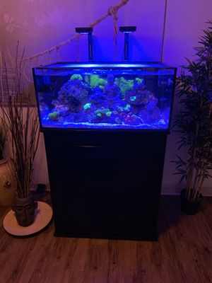 Saltwater Aquarium 60G for Sale in North Miami Beach, FL