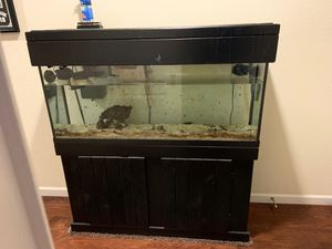 55 gallon saltwater fishtank for Sale in Brentwood, CA
