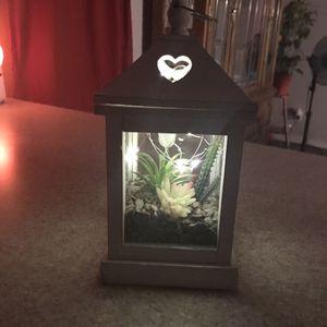 Succulent terrarium for Sale in Glendale, AZ