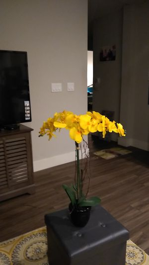 Beautiful flowers black pot green leaves.new 14.00 for Sale in San Marcos, CA