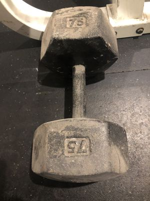 One 75lb Hex Dumbbell (trade for two 50's) for Sale in Modesto, CA
