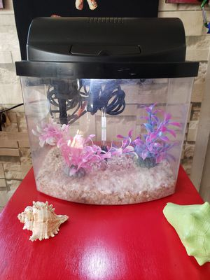 Small Fish Tank-- Pecera Pequeña for Sale in Missouri City, TX