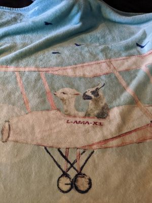 Llama blanket for Sale in Portland, OR