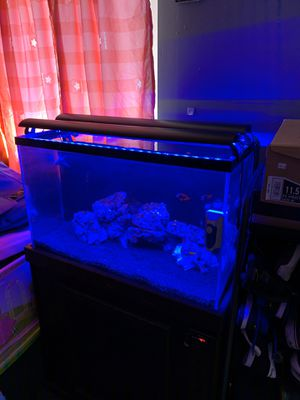 Salt water led lighting great for coral for Sale in Compton, CA