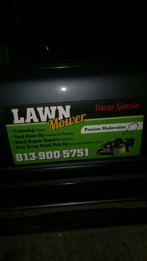 Lawn mower Trimming for Sale in Tampa, FL