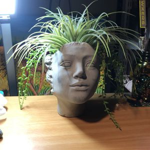 Plant Decoration Vase for Sale in Long Beach, CA