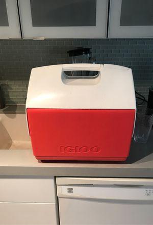 Igloo cooler for Sale in Santa Monica, CA