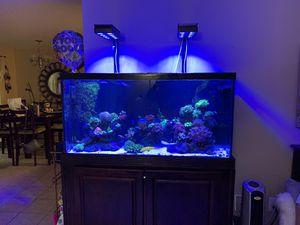 Reef Aquarium 90 Gallons for Sale in Tamarac, FL