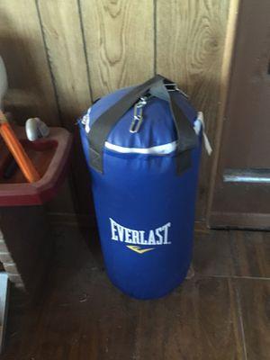 Youth starter 25 lb punching bag for Sale in Mesa, AZ