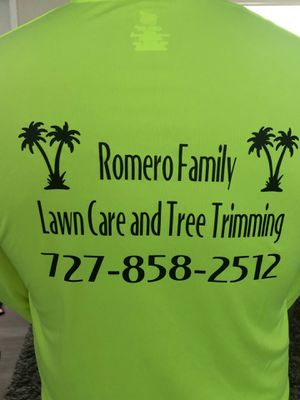 Lawn mower for Sale in Palm Harbor, FL