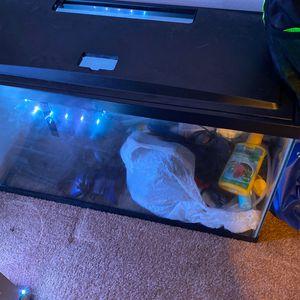 29 Gallon Led Fish Tank for Sale in Arlington, WA