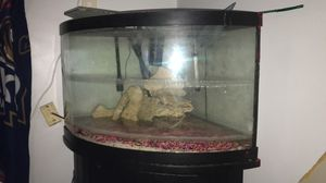Fish tank for Sale in Cleveland, OH