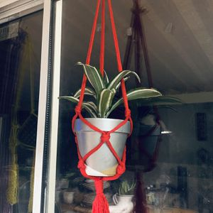 Red Macrame Hanging Plant Holder Display Garden Indoors Outdoors for Sale in Riverside, CA