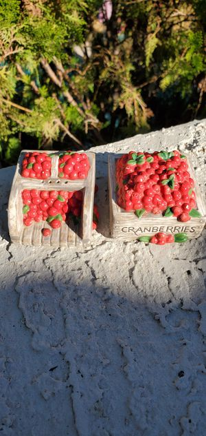 Cranberry Box Salt and Pepper Shakers for Sale in Goodyear, AZ