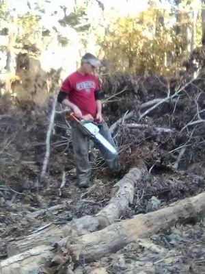 Oak firewood for Sale in Crewe, VA