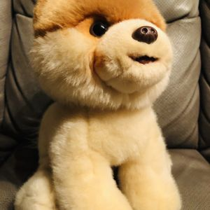 Cutest Dog Plush Toy for Sale in Irvine, CA
