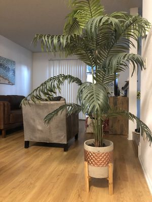 Fake plant decor- home goods for Sale in Redondo Beach, CA