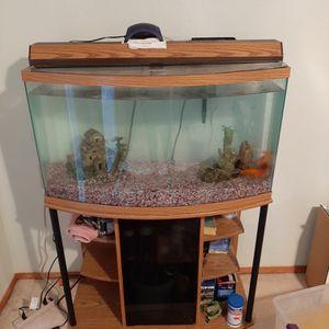 50 Gallon Tank for Sale in Renton, WA