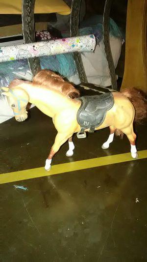 Horse for Sale in Modesto, CA