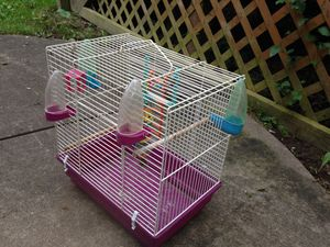 Bird Cage and Accessories for Sale in Claysville, PA