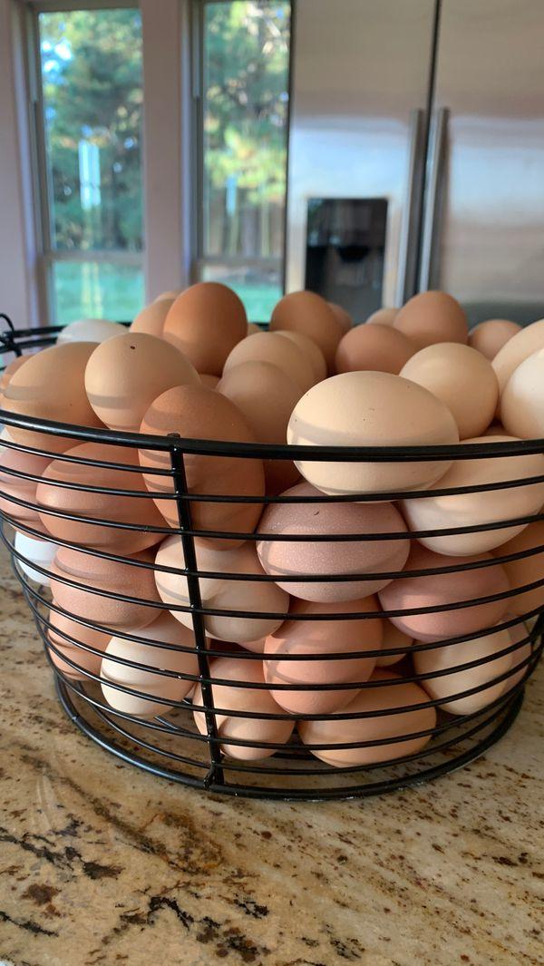 Huevos frescos 100%orgánicos $4 dólar la docena