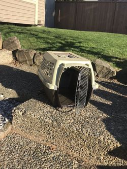 Pet Carrier for Sale in Kent,  WA