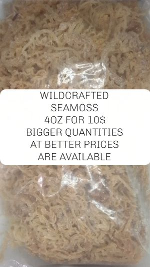 Seamoss for Sale in Houston, TX