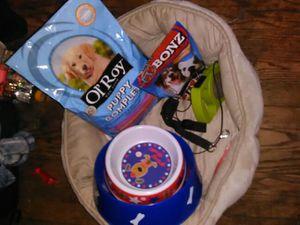 Dog leash food bed treats for Sale in Washington, DC