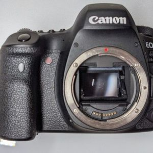 Canon EOS 6D mkii (Body Only) for Sale in Seattle, WA