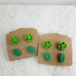 Succulent &Leave for Sale in Auburndale,  FL