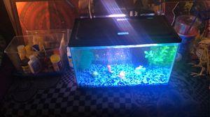 Fish tank, aquarium 5.5gallon for Sale in Eastpointe, MI