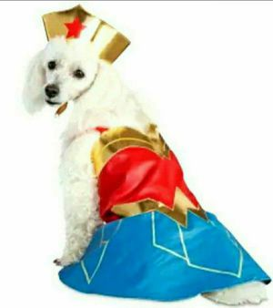 Wonder Woman Dog Suit SMALL DC League for Sale in La Habra Heights, CA