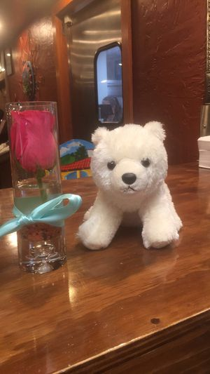 Stuffed polar bear - great gift for Sale in Tempe, AZ