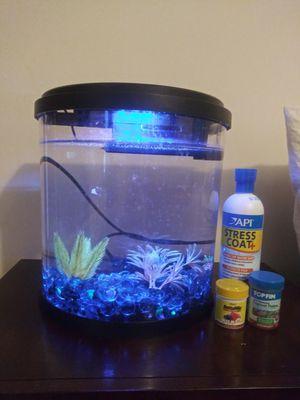 Top Fin Fish Tank for Sale in Mechanicsville, VA