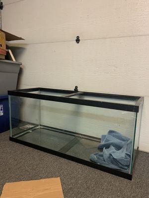 75 gallon aquarium for Sale in Hillsboro, OR