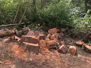 Free wood for Sale in Bothell, WA