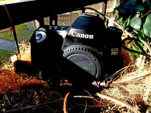 Canon 70D for Sale in Mesquite, TX