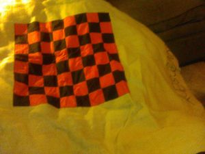 Cloth checker board do not have the chips . Great for game night park or just everyday play for Sale in Cleveland, OH