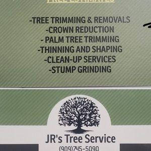 Tree ///Árboles for Sale in Bloomington, CA