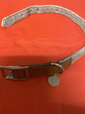 target dog collars for Sale in Tallahassee, FL