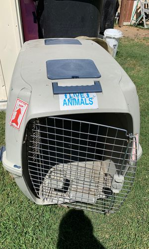 XL dog traveling cage. for Sale in Pasadena, CA