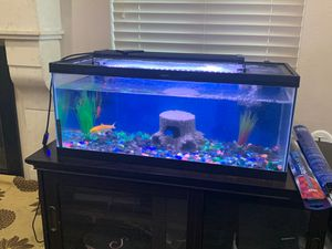 Fish tank with fishes for Sale in Rancho Cucamonga, CA