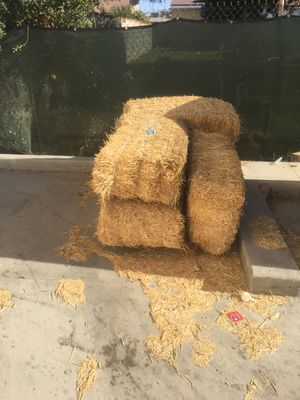 Bushes of Hay for Sale in Corona, CA