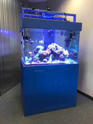 Full set Sea water fish tank(all included) for Sale in Arcadia, CA