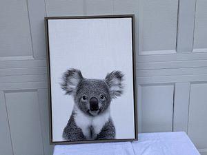 Koala print for Sale in Bellevue, WA